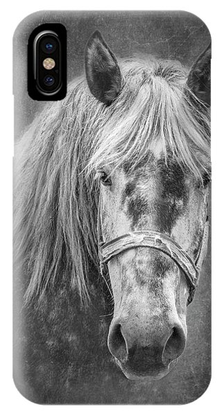 White Horse iPhone Case - Portrait Of A Horse by Tom Mc Nemar