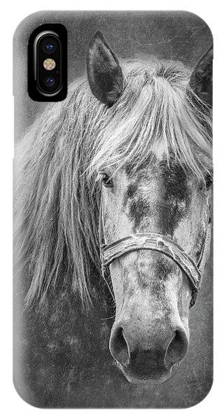 Tan iPhone Case - Portrait Of A Horse by Tom Mc Nemar