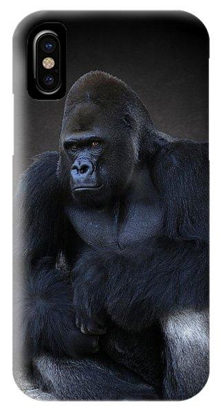 Portrait Of A Male Gorilla IPhone Case