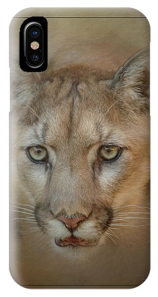 Portrait Of A Mountain Lion IPhone Case
