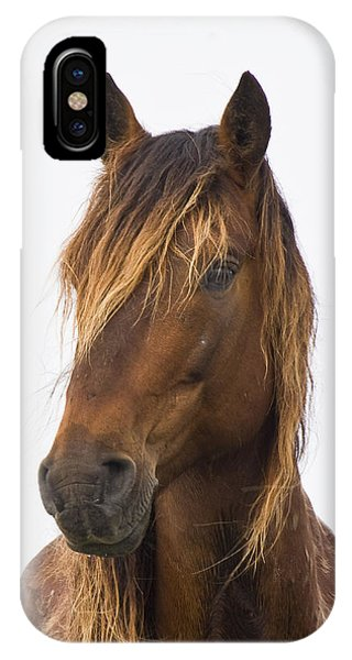 Portrait Of A Mustang IPhone Case