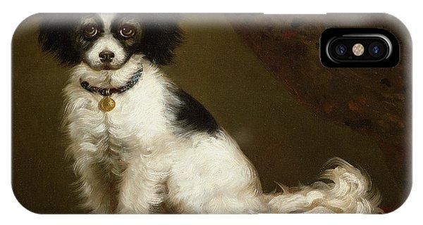 Portraits iPhone Case - Portrait Of A Spaniel by Anonymous