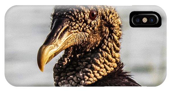 Portrait Of A Vulture IPhone Case
