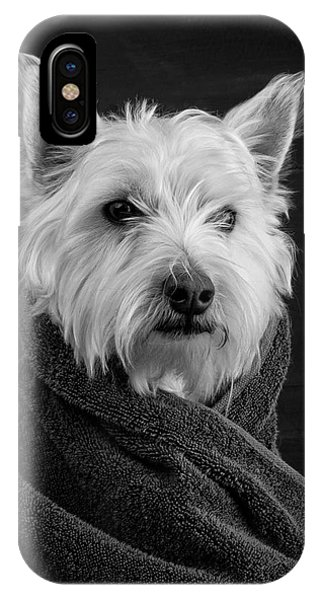 White Background iPhone Case - Portrait Of A Westie Dog by Edward Fielding