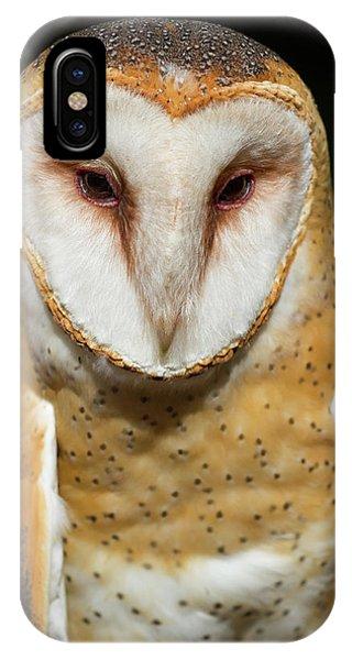 Portrait Of Athena IPhone Case