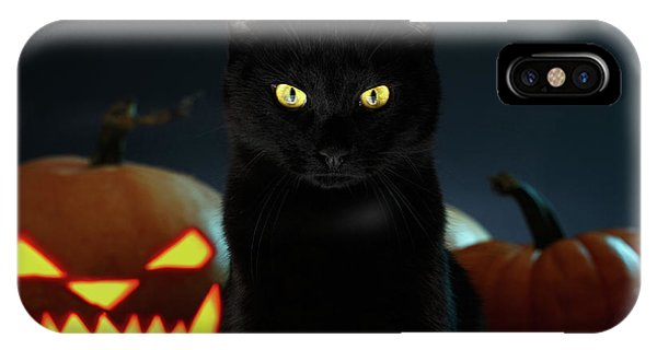 Portrait Of Black Cat With Pumpkin On Halloween IPhone Case