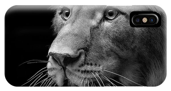 Detail iPhone Case - Portrait Of Lion In Black And White II by Lukas Holas