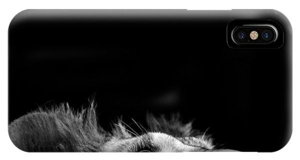 White iPhone Case - Portrait Of Lion In Black And White IIi by Lukas Holas