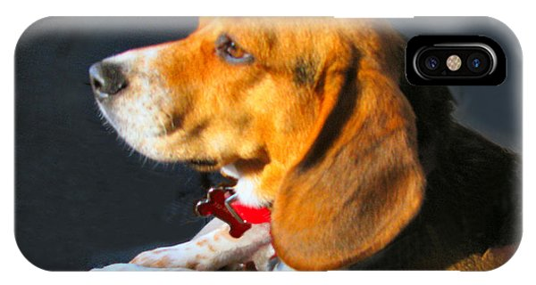 Portrait Of Pebbles - The Independent Beagle IPhone Case