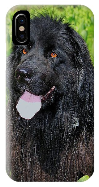 IPhone Case featuring the photograph Portrait Of Sierra by Sean Sarsfield
