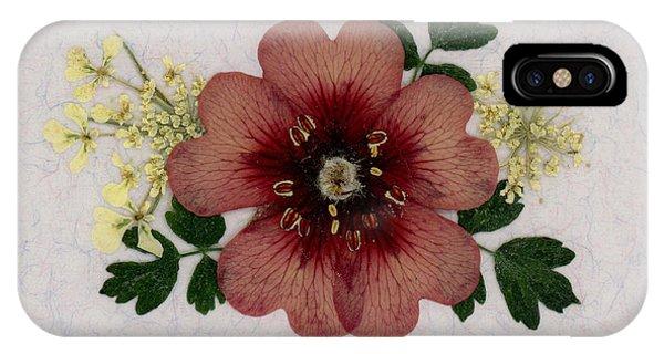 Potentilla And Queen-ann's-lace Pressed Flower Arrangement IPhone Case