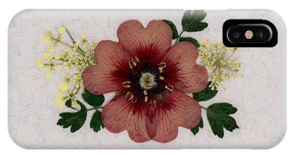 Potentilla And Queen-ann's-lace Pressed Flower Arrangement IPhone Case