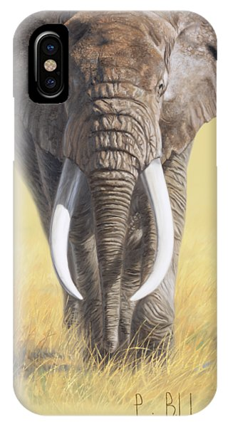 Africa iPhone X Case - Power Of Nature by Lucie Bilodeau