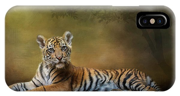 Practicing My Big Kitty Stare IPhone Case