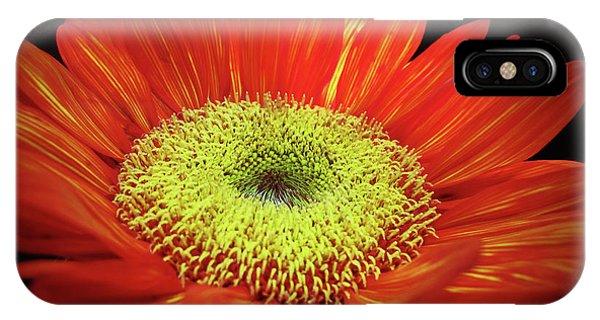 Prado Red Sunflower IPhone Case