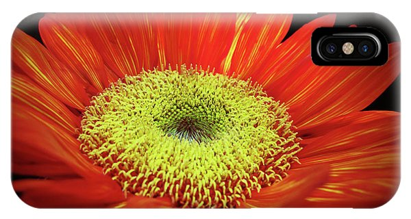 Prado Red Sunflower IPhone Case