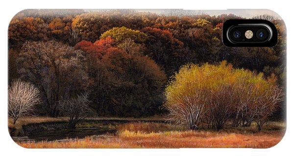Prairie Autumn Stream IPhone Case