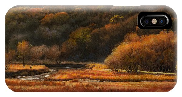 Prairie Autumn Stream No.2 IPhone Case
