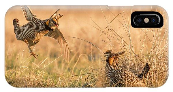 Prairie Chicken Dispute IPhone Case