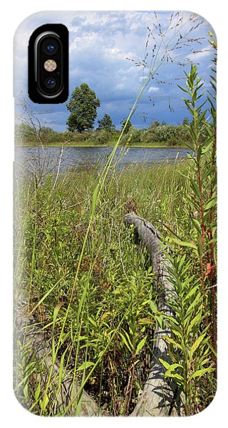 Prairie Meets Wetland IPhone Case