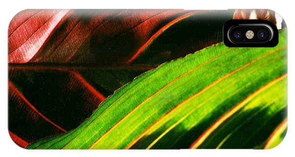 Prayer Plant Passing IPhone Case