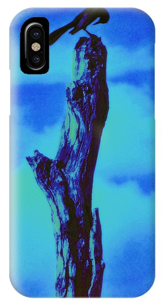 Praying Black Bird Grace In Nature IPhone Case