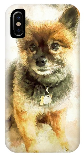Precious Pomeranian IPhone Case