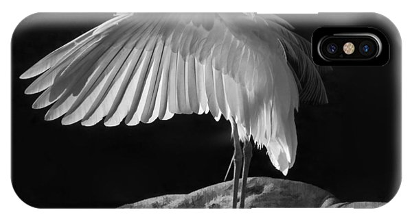 Preening Great Egret By H H Photography Of Florida IPhone Case