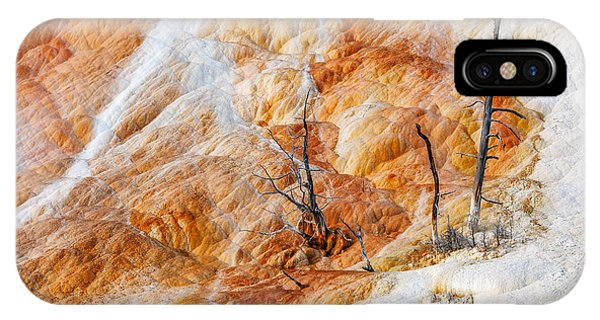 Mammoth Hot Springs iPhone Case - Prehistoric Trees by Todd Klassy