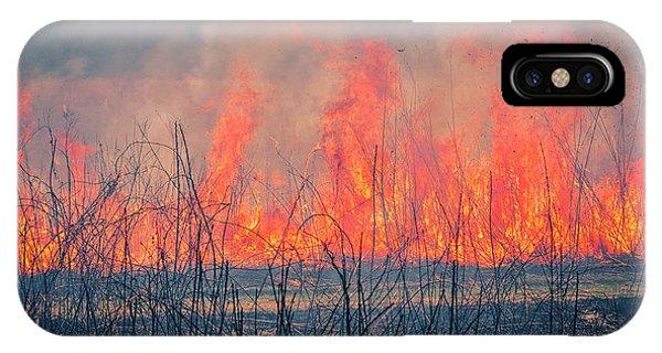 Prescribed Burn 3 - Uw Arboretum - Madison - Wisconsin IPhone Case