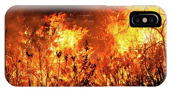 Prescribed Burn IPhone Case