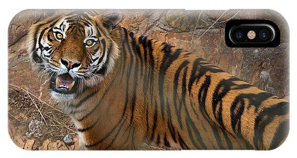 Pretoria Zoo IPhone Case
