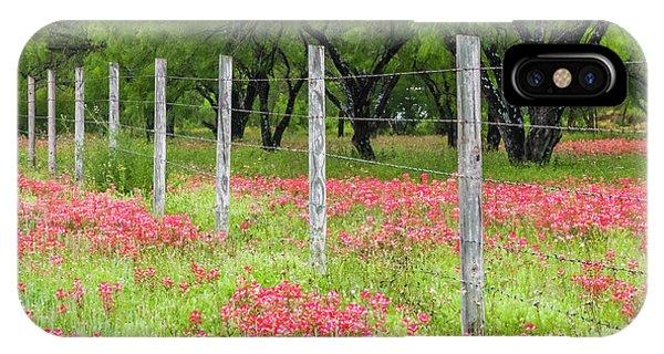 Scarlet Paintbrush iPhone Case - Pretty Along The Fence-indian Paintbrush. by Usha Peddamatham