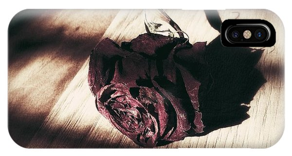 Pretty Dead Rose Resting In The Warm Sun IPhone Case