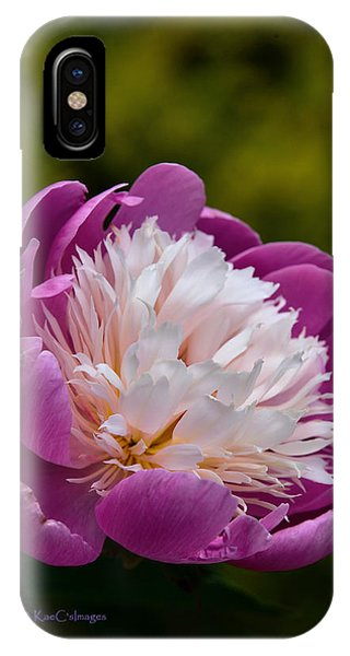 Peony iPhone Case - Pretty In Pink by Kae Cheatham
