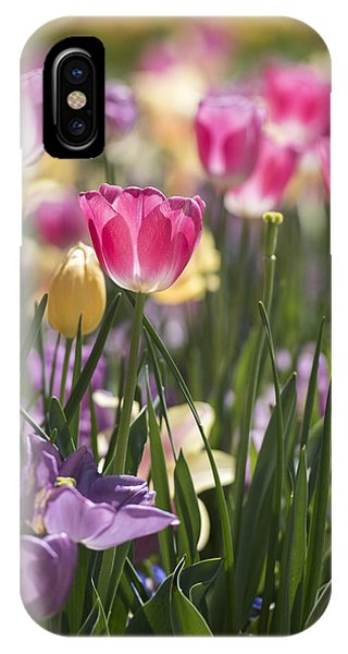 Pretty In Pink Tulips IPhone Case