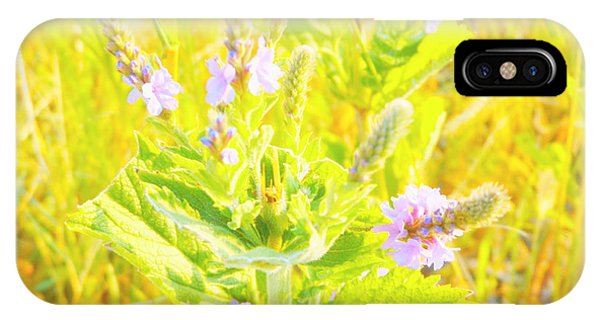 Pretty Lilac IPhone Case