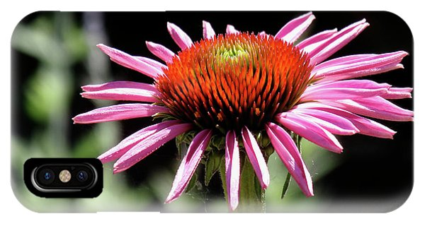 Pretty Pink Coneflower IPhone Case