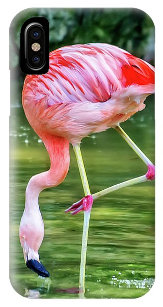 Pretty Pink Flamingo IPhone Case