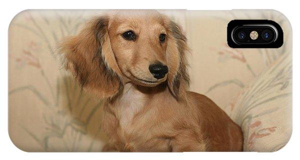 Pretty Pup IPhone Case