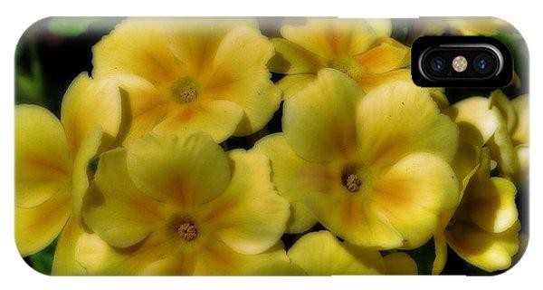 Pretty Yellow Primrose IPhone Case