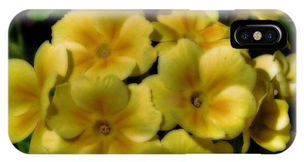 Pretty Yellow Primrose IPhone Case