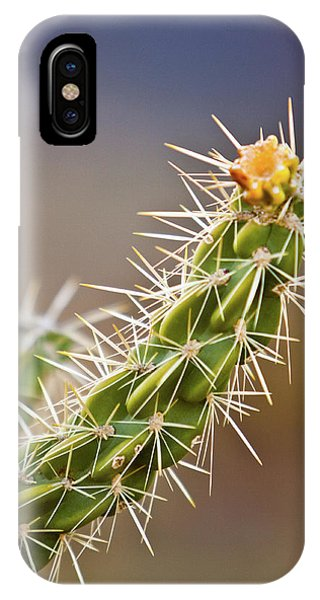 Prickly Branch IPhone Case