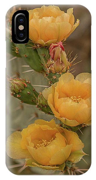 Prickly Pear Blossom Trio IPhone Case