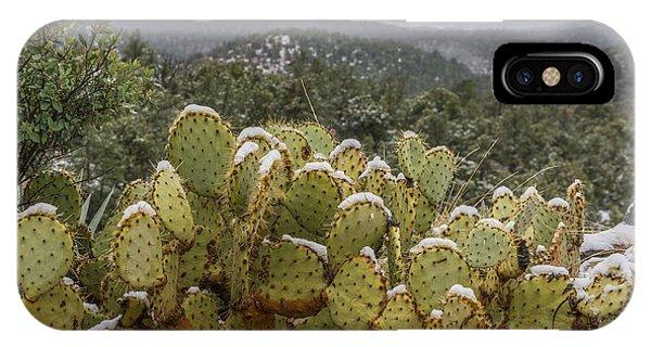 Cactus Country IPhone Case