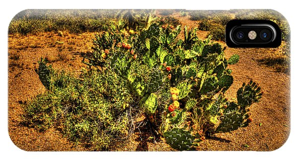 Prickly Pear In Bloom With Brittlebush And Cholla For Company IPhone Case