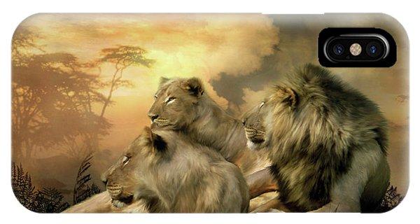 African Lion Art iPhone Case - Pride by Carol Cavalaris