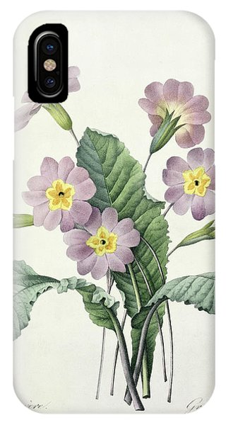 Botanical iPhone Case - Primrose by Pierre Joseph Redoute