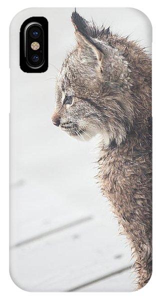 Profile In Kitten IPhone Case
