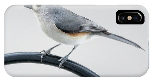 Profile Of A Tufted Titmouse IPhone Case